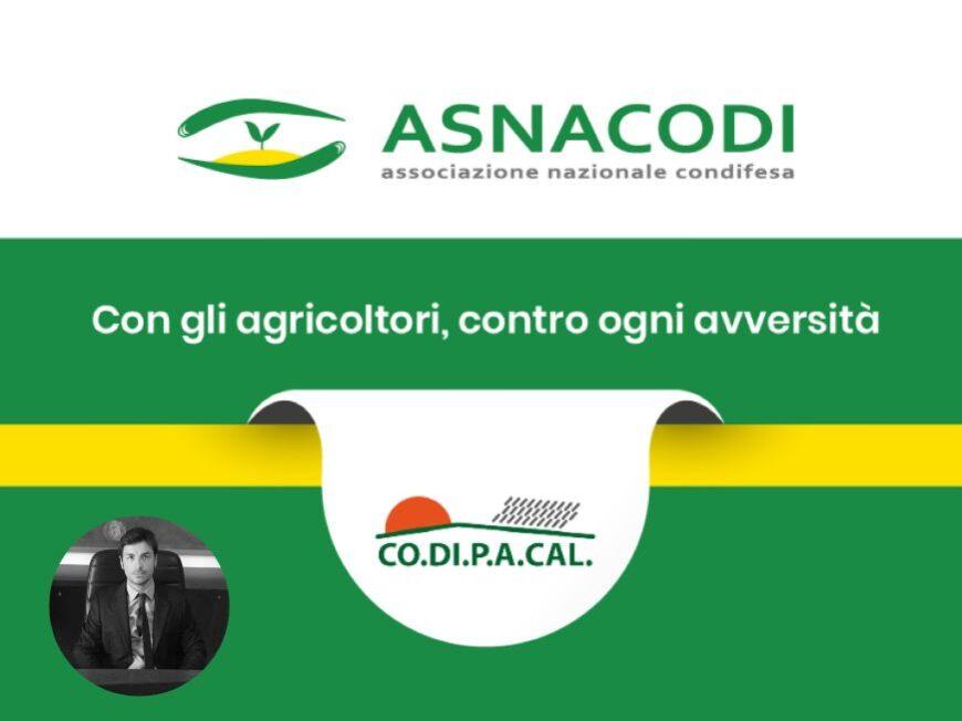 CdA Asnacodi